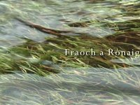 Excerpt from A Confluence - Fraoch a Rònaigh (silent version)